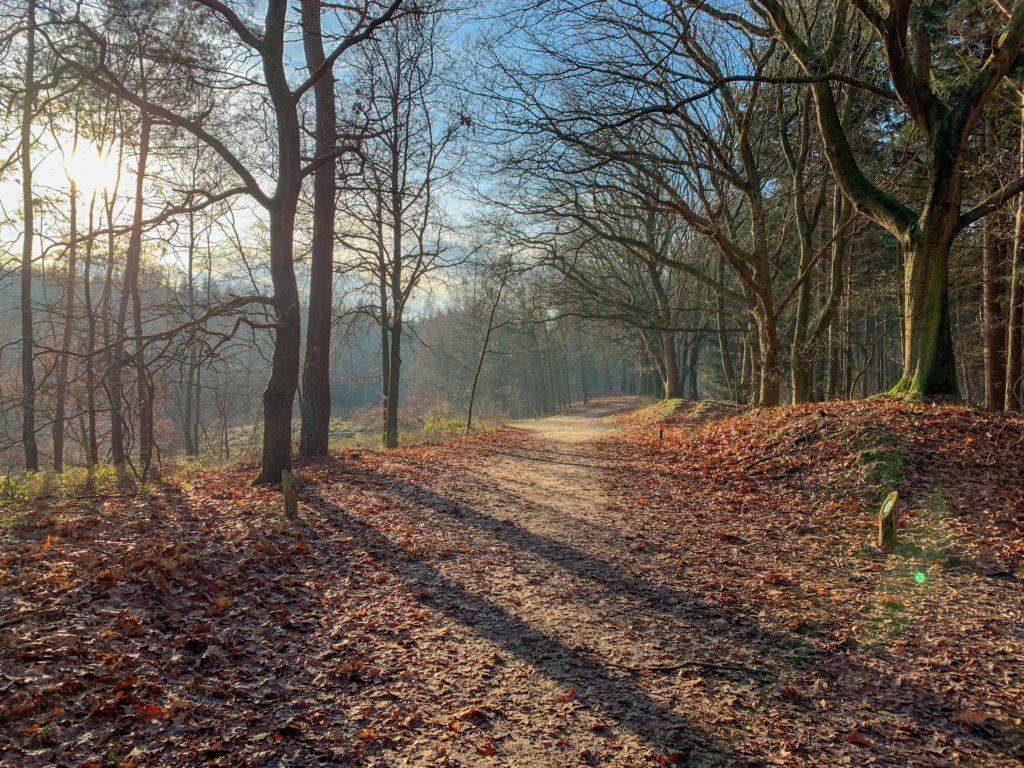 Runningtherapie Hardloopgroep Amersfoort